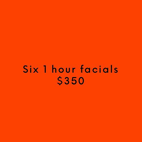 Six 1 Hour Facials