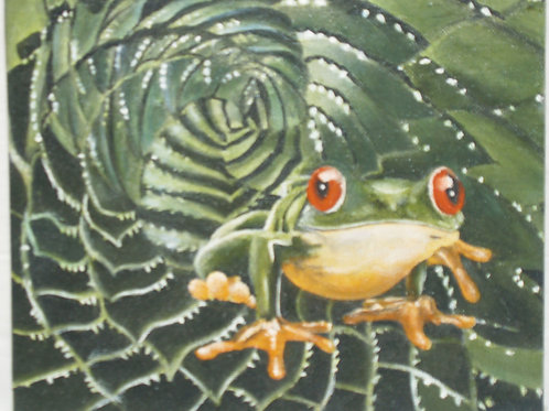 Frog at Home