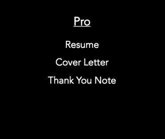 Pro Resume Bundle