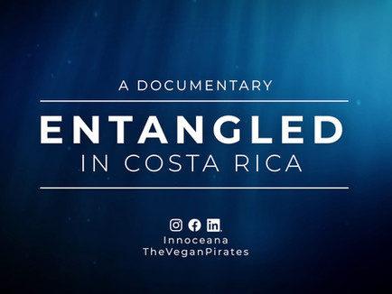 ENTANGLED IN COSTA RICA