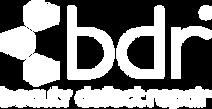 bdr_logo_1 Kopie.png
