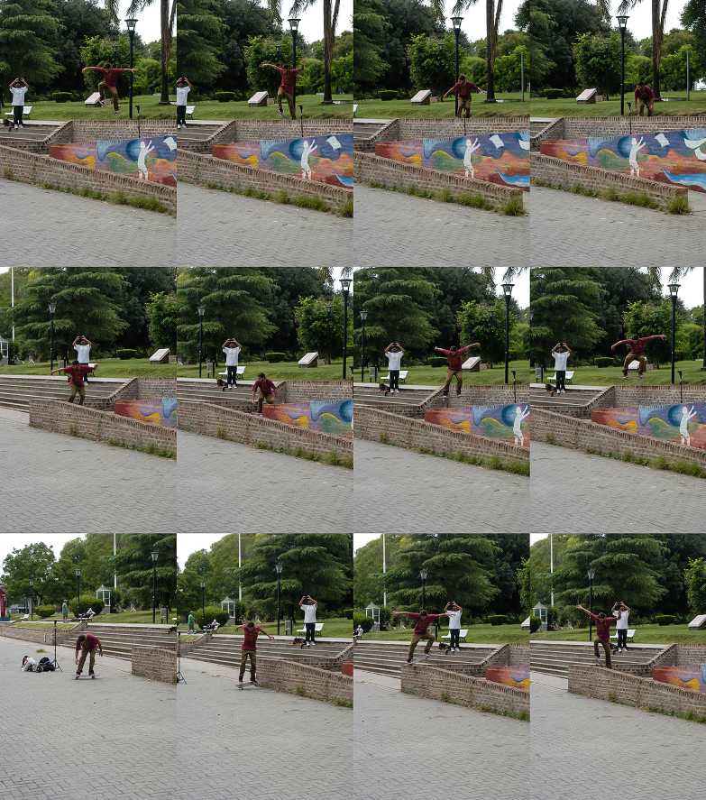 resized_sec dani sturtz ollie in to nosebump.jpg