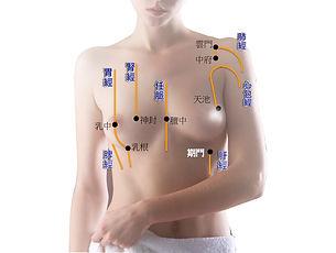 胸部+穴位.jpg