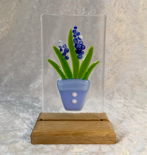 Hyacinth on Reclaimed Oak stand