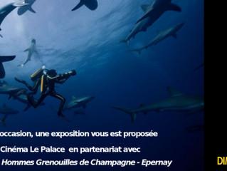 L'odyssée de Y.Cousteau
