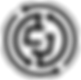 Coin Black CROP.png