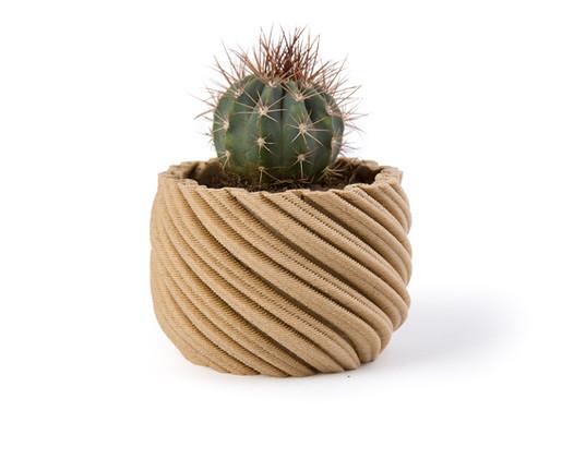 Cactus Light Wood Tone