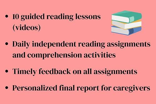 Level 5+ Reading Session