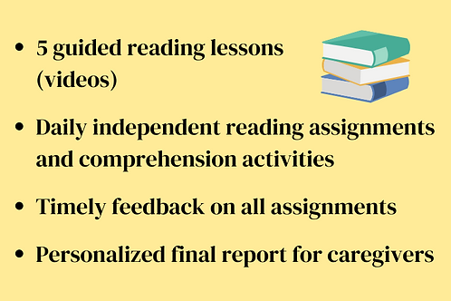 Level 4 Reading Session- Mini