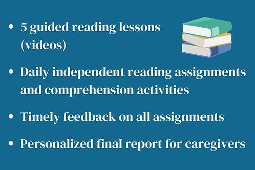 Level 5+ Reading Session- Mini