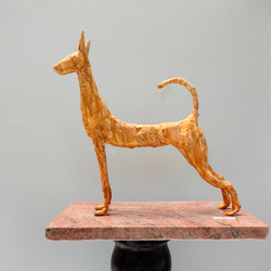 Wire and Tape Podenco