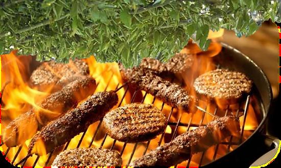 BBQ Sukkah.png