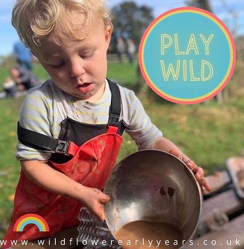 Play Wild Accreditation (Full Year)