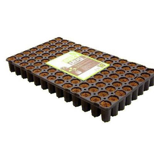 EAZY PLUG RUND 104 KARTON (6 Trays pro Karton)