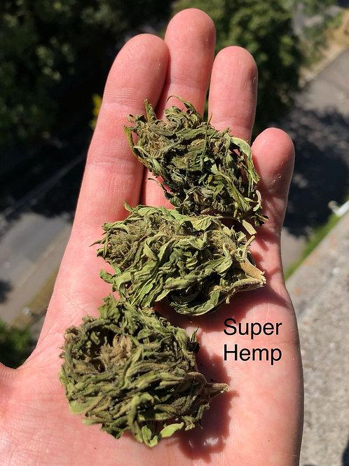 Super Hemp, Outdoor, <0.2 % thc