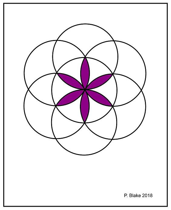 Circular Flower.png