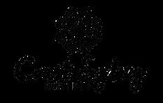 Coast Sydney Logo退地.png