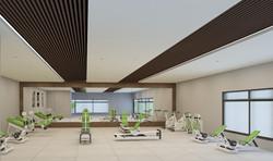 Geriatric Gym