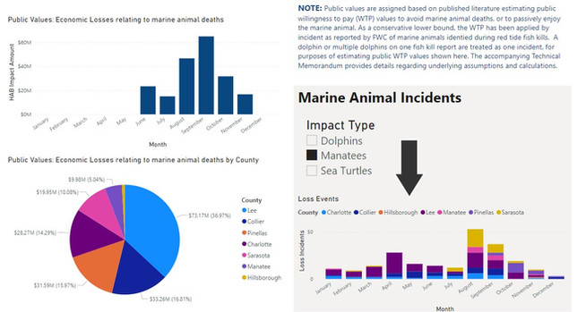 Dashboard showing Economic Impacts of Mariane Animal Deaths