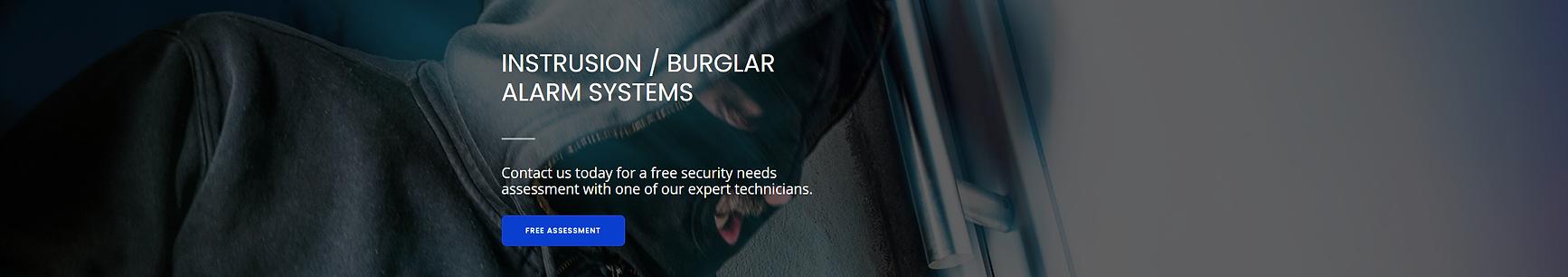 burglar banner.png
