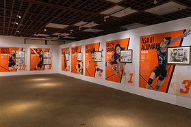 'Haikyuu!!' original painting exhibition is now open in Sendai, never before seen illustrations displayed