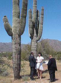 Wedding Ceremony in desert