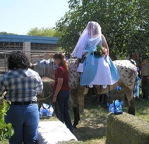 Bride riding horse at a wedding
