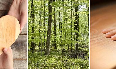 Massivholzm-bel-ts.jpg