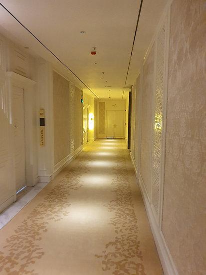 Cladding для коридоров 2