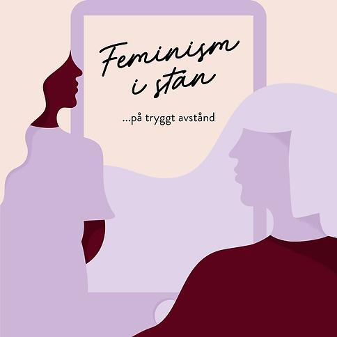 Feminism i stan - på tryggt avstånd