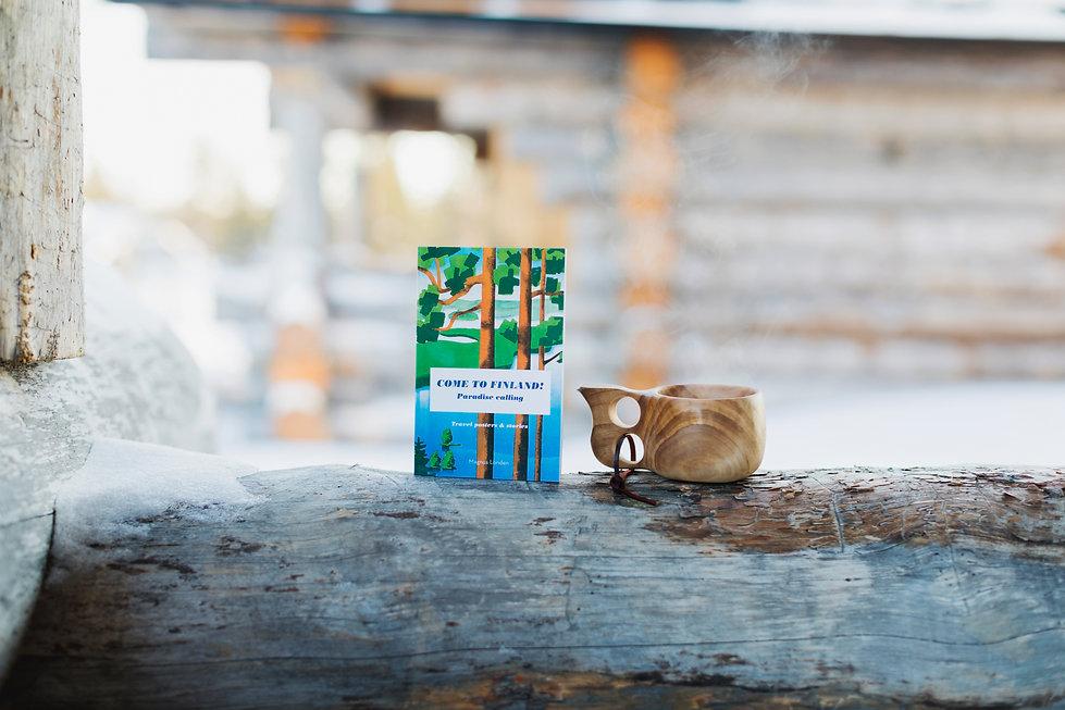 Come to Finland paperback book