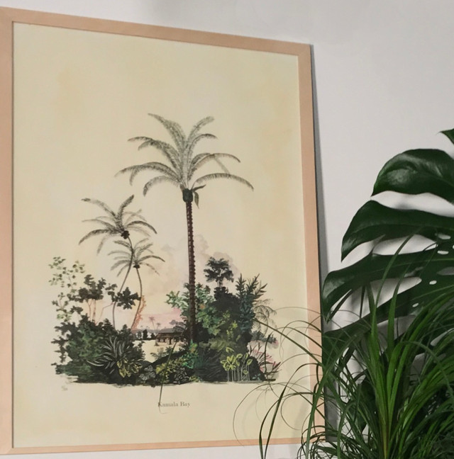 Scenic Palms-Kamala Bay.jpg