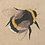 Thumbnail: Queen Bee Embroidered Cushion Cover