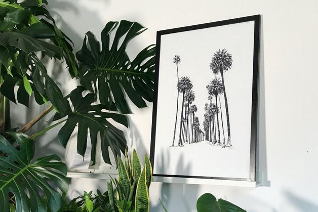 Palm Avenue et al.jpg