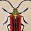 Thumbnail: Embroidered Beetle Cushion Cover - Red  Supplied as cover only