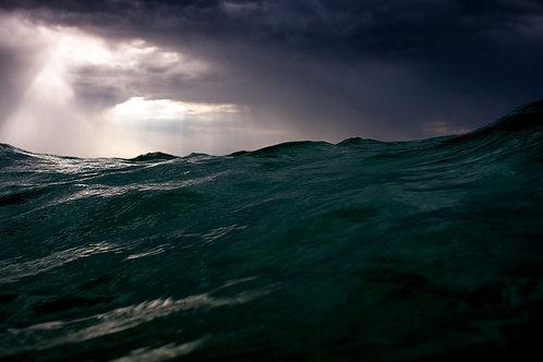 Beastly Sea