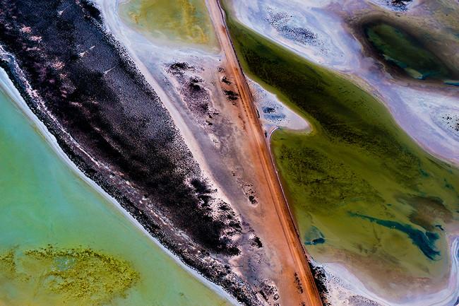Painter's Palette.jpg