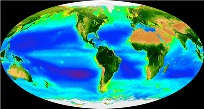 Productivity in the World Oceans
