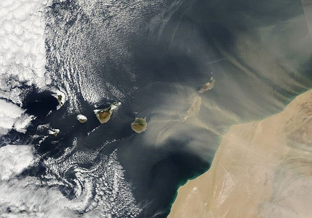 Dust storm in the Canary Islands from space