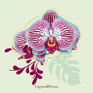 Ilustración // Laguna y Fauna