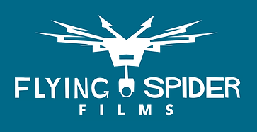 Flying Spider Films