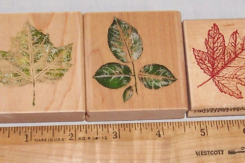 Wood Mounted Rubber Stamp Rubber Stampede & Hampton Art Leaves Maple Autunm Fall