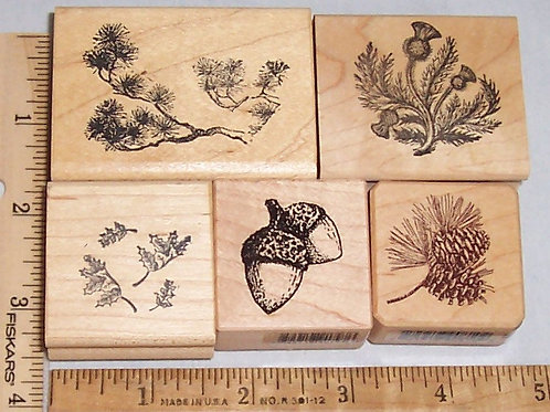 Wood Mounted Rubber Stamp Acorns, Holly Leaves, Pine Cones, Evergreen, Lotus