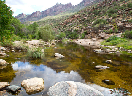 Arizona's Waters Lose Federal Protection