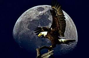 Eagle%20Moon_edited.jpg