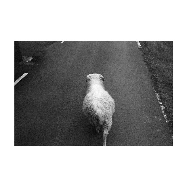 ClipBW01_Faroe_Pic04.jpg