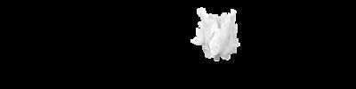 Hecker Lane logo_edited.png