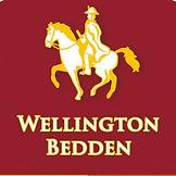 logo wellington.jpg