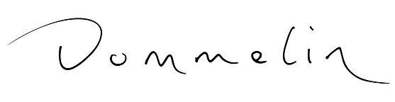 Dommelin-logo.jpg