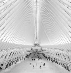Oculus Architecture